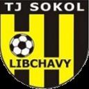 Libchavy